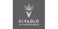 logo_dnv